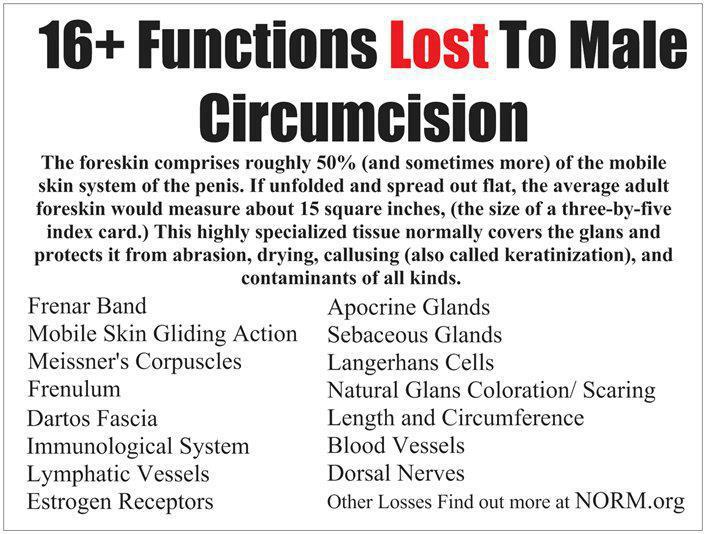 male circumcision gone wrong
